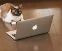 WEBページをデータへ!スクレイピングを行います 情報収集に時間をかけている方!日々の仕事を自動化したい方必見