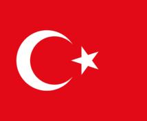 日本語・英語⇄トルコ語に翻訳・添削します ネイティブ(トルコ語)によるチェック有