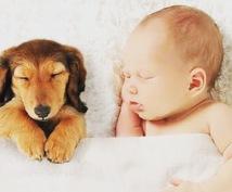 あなたの睡眠改善します 睡眠改善で、新しい自分に出会ってみませんか?