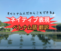 ベトナム語⇄日本語/両国の目線で翻訳致します / ネイティブの言葉が必要な方、翻訳機では不十分な方/その他
