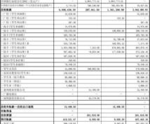 中国の財務関連資料翻訳します BS、PL以外の財務関連資料の日中翻訳をします