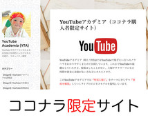 2018年【最新】YouTube★堅実に★稼げます 副業や主婦に特にオススメ★毎月30万円以上稼いでいる方法★