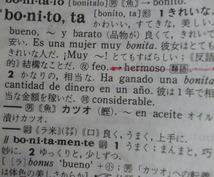 【スペイン語】 屋号、商標・商号、商品名、サッカーチーム名等のネーミングをラテン系にしませんか