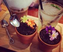 韓国ソウル旅行で可愛いカフェ教えます カフェがめちゃくちゃ可愛い!インスタ映え間違いなしです!