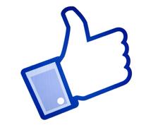 facebookであなたの記事シェアします facebookページで宣伝お手伝いします!