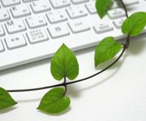元ページランク6のブログに紹介!(永続的)SEO対策 IP分散済