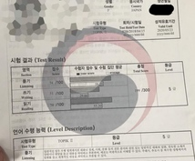 韓国語→日本語、日本語→韓国語に翻訳します TOPIK5級保有!!韓国語翻訳!!