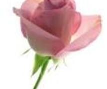 落ち込んでいるあなたへ、愛のメッセージを贈ります タロットとオラクルカードが、愛を込めたメッセージを送ります