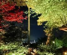 実りの秋!パワーを授ける神社とお悩み解消します ダウジング鑑定でお悩み解消、そしてパワスポ神社でパワー充電!