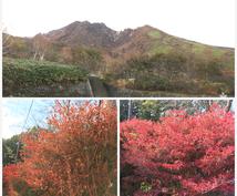 那須高原を満喫できるコースをご案内します 子連れデート家族旅行別スポットをご案内!