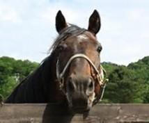 競馬orパチンコの入り方勉強の仕方教えます 競馬やパチンコの初歩のやり方や、入り方教えます(初級~中級)