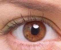 眼科、眼の病気についての相談