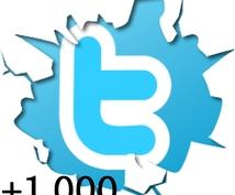Twitter1,000フォロワー追加サービス