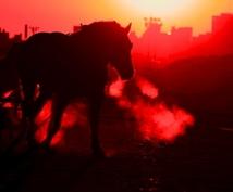 競走馬の血統診断を承ります 一口馬主の募集馬や、種付け前の肌馬に相性のいい種牡馬を