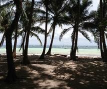 フィリピン セブ島にて公的/契約書類作成します セブ島で起業、不動産売買、ビザ申請必要な方へ