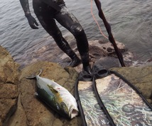 高級魚を捕る方法を教えます 海で釣りに挑戦するけど、ボウズが多くて悔しい思いをしている方