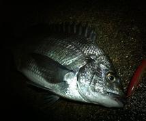 県外の方、初心者歓迎!富山の釣り情報教えます 釣り歴20年のベテランにおまかせ!