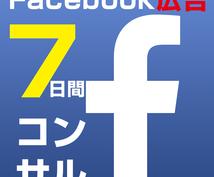 Facebook広告を7日間コンサルします Facebook広告7日間コンサルされまくりサービス