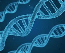 若さと元気のDNAの活性化いたします 遺伝子レベルから若くありたいかたへ