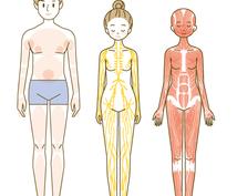 各種ポーズの細かい指示のある人物イラスト作成ます 医療・介護・エステのポーズなど
