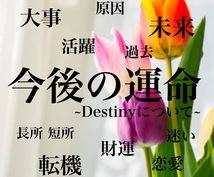 今後の運命 占い付きます ~Destinyについて~ あなたの幸せのお手伝い♥特典あり