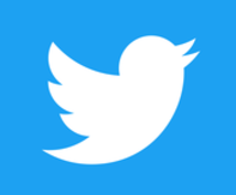 Twitterアンケート(1000票以上!)の内容受付