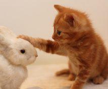 """あなたを支え、励まします """"病んだ心""""を、放っておかないでください"""