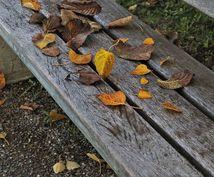鬱っぽい、気分が上がらない方のお話傾聴します 冬季うつの季節です‼️自律神経の乱れも‼️