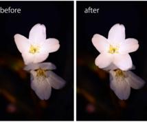 photoshopで画像加工、修正、合成します 写真をもっときれいに、より良くします