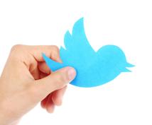 ツイッター日本人フォロワー50人増える宣伝します 増えるフォロワーは日本人のアクティブユーザーのみ!