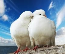 男女間の悩み事にアドバイスします 恋愛、夫婦生活、不倫や浮気等の悩みを抱えている方へ