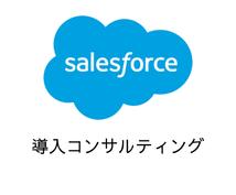 Salesforce導入コンサルティングします ベンチャー・スタートアップ・中小企業に特化した導入支援