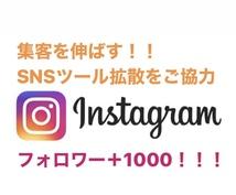 Instagramフォロワー+1000拡散します 集客に重要なSNS インスタグラムのページを宣伝、拡散します