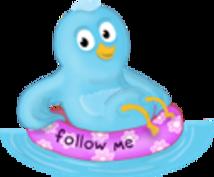【特典付!】ツイッター サイトにアクセス集めよう!普通に使って効果がある方法教えます!