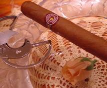 キューバ葉巻の選び方!吸い方をアドバイスします 知恵のフクロウ!ホーホー鳥のキューバ葉巻へのお誘い!
