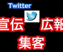 アクセス倍増!Twitterでの宣伝方法教えます アクセスを2,3倍にぶちあげて効果的に宣伝・集客したい人向け