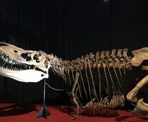 恐竜に関する情報がたっぷりの文章作成、引き受けます 恐竜サイエンスコミュニケーターが、恐竜の文章を作成します!