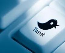 Twitterで9,000のフォロワーにあなたのつぶやきたいことを一ヶ月間ツイートします。