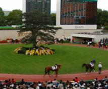 【JRA】競馬のレース展望を1Rにつき1000円で書きます。