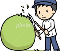 庭木の剪定サポートします 便利屋さん遠隔サポート⑬庭木の剪定(電話にて)