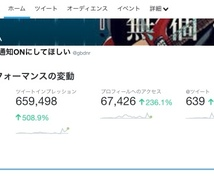 フォロワー2万人のツイッターアカウントで宣伝します 100以上いいねがつくアカウント!効果的な宣伝におすすめ