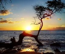 ハワイ移住者が質問にお答えいたします 旅行、長期滞在、移住。今迄とは違うハワイを楽しもう!