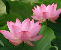 霊能力、神通力占い致します 霊能力、神通力で現時点のあなたのケを占います。