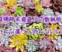 もって生まれた個性からあなたのトリセツお届けします 西暦が始まる前、遥か昔から日本に伝わる、陰陽師末裔直伝数秘術