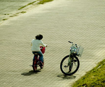 発達障害(自閉症スペクトラム)は対人関係や仕事に不安がありストレスを受けやすく伴走する人が必要です。