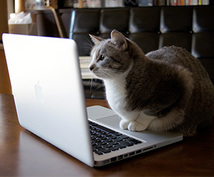 プログラミングの課題・質問・相談受け付けます 勉強や趣味をがんばるあなたに、がんばらない時間を提供します。