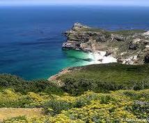 南アフリカケープタウン観光スポットご紹介します 南アフリカにご興味のある方、一度は行ってみたいなと思う方へ