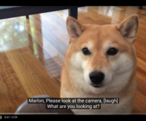 Youtube他動画に英語字幕つけます あなたの動画を世界に配信するお手伝いをします。