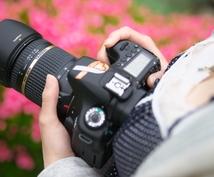 初めての交換レンズ選びのお手伝い。現役のプロが失敗しない交換レンズの購入アドバイスを致します。