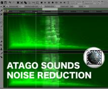 音声データのノイズを除去します 会議や講演会、楽器演奏や歌に入ってしまったノイズを除去